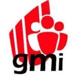 Logotip GMI